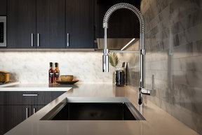 Chef-inspired pulldown faucet and stainless steel sink.