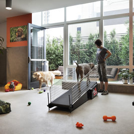 Dog City is a professionally-staffed pet spa with indoor and outdoor play spaces, wash, dry and grooming facilities, on-site dog training, dog walkers, in-home feeding, play dates, and much more.