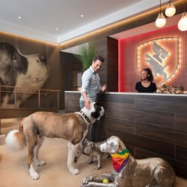 The pet friendly building includes an on-premises Dog City.