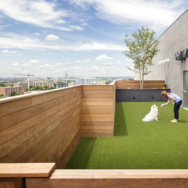 Rooftop dog run offers dog walking, grooming, and day care services exclusively for resident pets.