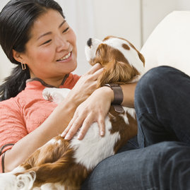 All Related Rentals buildings are pet friendly, so bring your dogs and cats, and let them enjoy the same level ofˇservice as their happy owners!