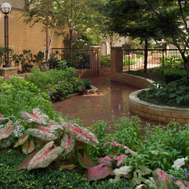 Take sanctuary from the busy city in the lushly landscaped private garden paths of The Strathmore