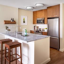 1 Bedroom, 1 Bath Apartments at The Arlington in Back Bay
