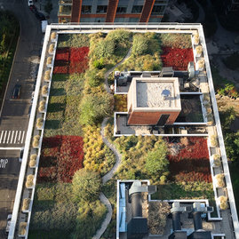 The living roof mitigates runoff and provides green space.